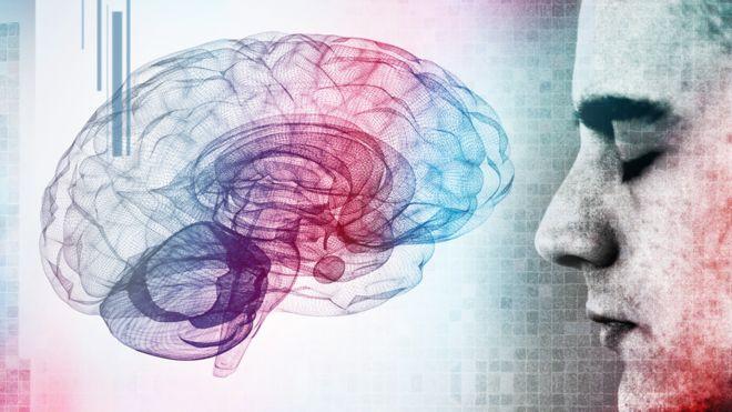 Założenia dotyczące mózgu okazały się błędne. Wytwarzanie neuronów wcale nie spada z wiekiem