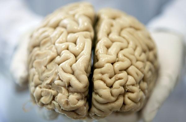 Usunięto mu ponad 15% mózgu. Sposób, w jaki narząd się dostosował, zadziwił społeczność medyczną