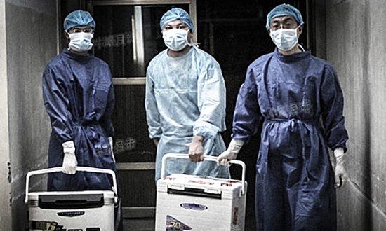Do setek badań medycznych wykorzystano narządy pochodzące od więźniów, którzy nie wyrazili zgody
