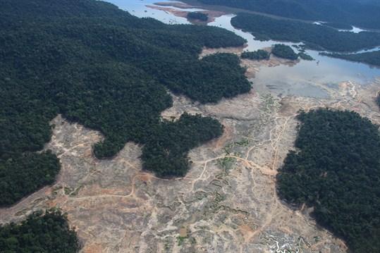 Amazonia osiąga punkt krytyczny. Płuca planety mogą zamienić się w martwą pustynię