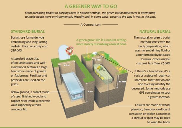 Ekologiczny cmentarz z kartonowymi trumnami. Władze Paryża zachęcają do zielonego pochówku