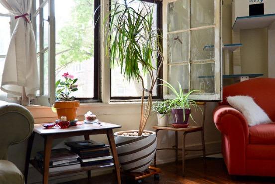 Zanieczyszczenie powietrza w twoim domu może być znacznie gorsze, niż na zewnątrz