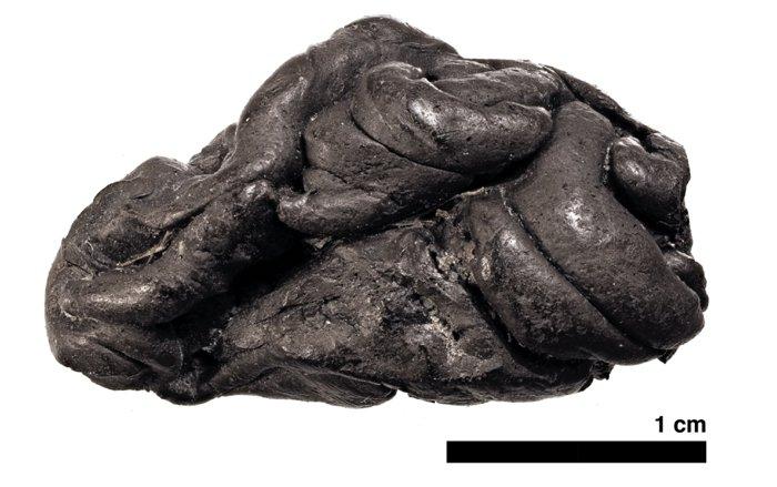 starożytna guma