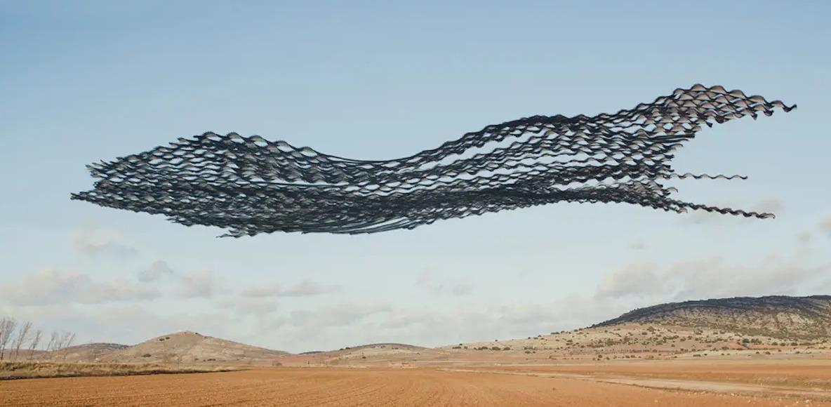 To hipnotyzujące stado ptaków wygląda jak ruchoma rzeźba na niebie. Uchwycone w idealnym momencie