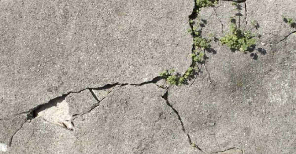 """Naukowcy opracowali """"żywy beton"""". Materiał jest w stanie samodzielnie się zregenerować"""