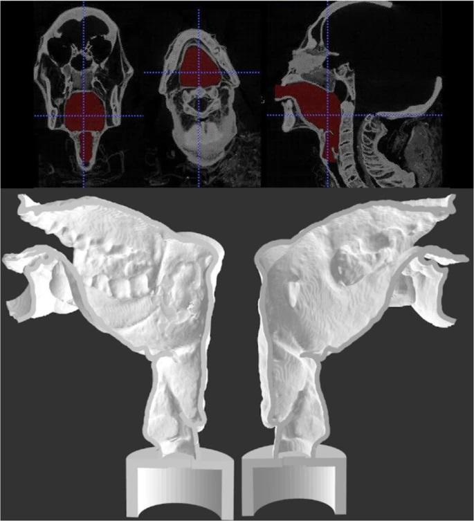 Możesz posłuchać głosu starożytnej egipskiej mumii sprzed 3000 lat
