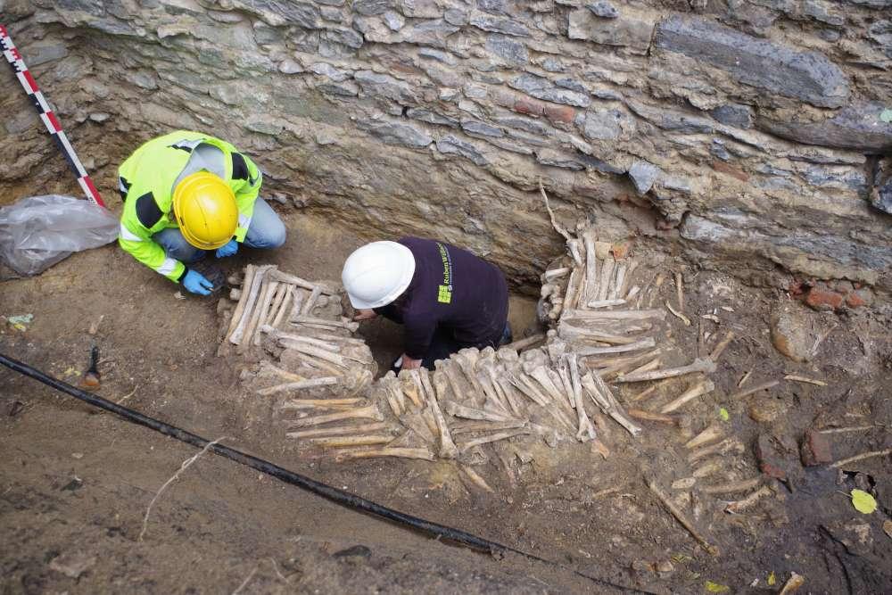 Średniowieczna ściana wzniesiona z ludzkich kości została znaleziona przez archeologów w Belgii