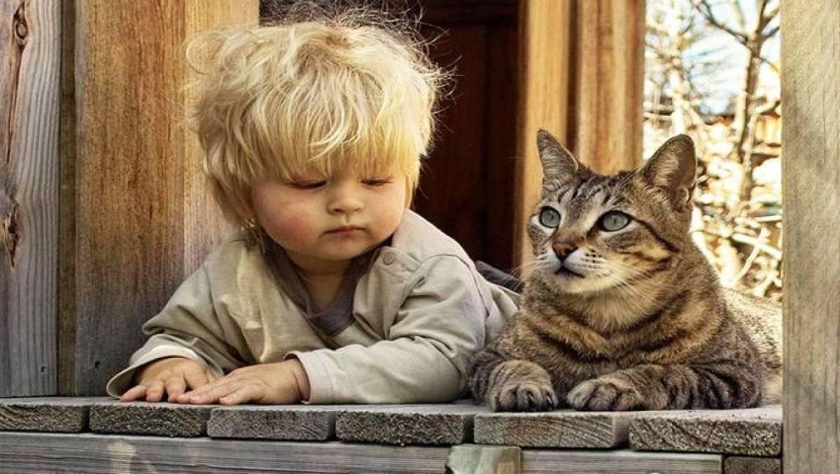 Zwierzaki mają pozytywny wpływ na rozwój dziecka. Pociechy dorastające z pupilem są zdrowsze