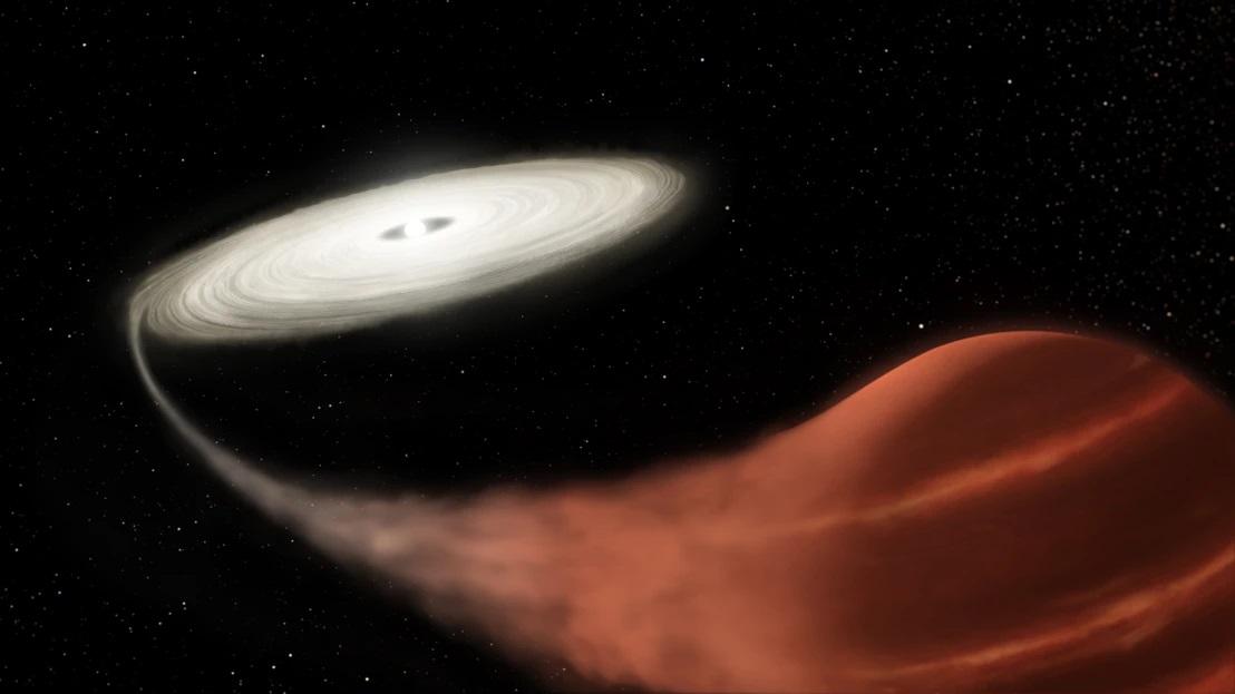 Gwiazda-wampir została odkryta przez astronomów. Biały karzeł wysysa energię ze swojego sąsiada