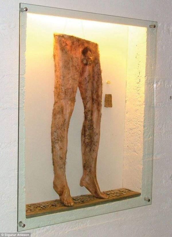 Dziwaczne eksponaty z muzeów na całym świecie. Niepokojący, ale bardzo edukacyjny trend