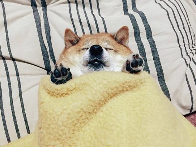 Naukowcy wyjaśnili, dlaczego nie potrafimy zasnąć bez przykrycia nawet w upalne noce