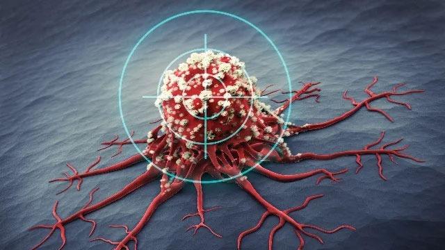 Naukowcy są o krok bliżej zrozumienia, jak działa odporność na raka u pewnego gatunku gryzonia