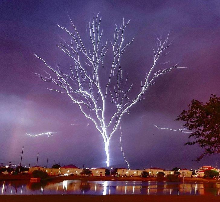 21 fenomenalnych zdjęć, które ukazują piękno natury w najmniej spodziewanych miejscach