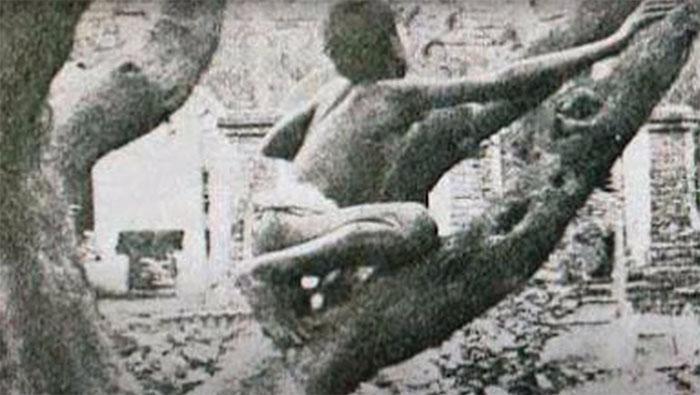 """Mowgli z """"Księgi dżungli"""" żył naprawdę. Poznajcie tragiczną historię Diny Sanichara"""