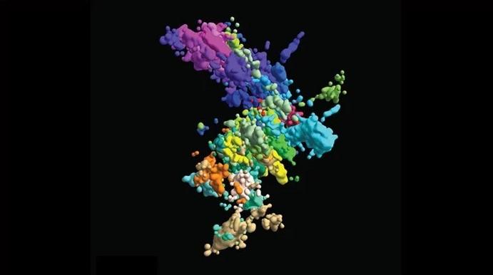 Chromosomy wcale nie wyglądają jak X. Naukowcy pokazali, jak rzeczywiście wygląda chromatyna