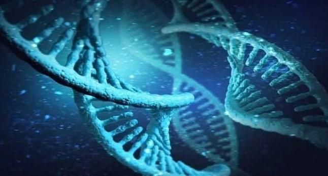 W SARS-CoV-2 znajduje się ukryty gen, który dopiero teraz został wykryty