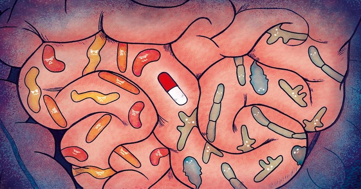 Odkryto ponad 140000 nowych wirusów w jelitach. Prawie połowa jest zupełnie nowa dla nauki