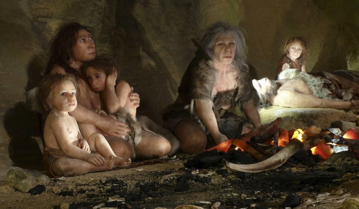 Odwrócenie pola magnetycznego Ziemi mogło doprowadzić do wyginięcia neandertalczyków