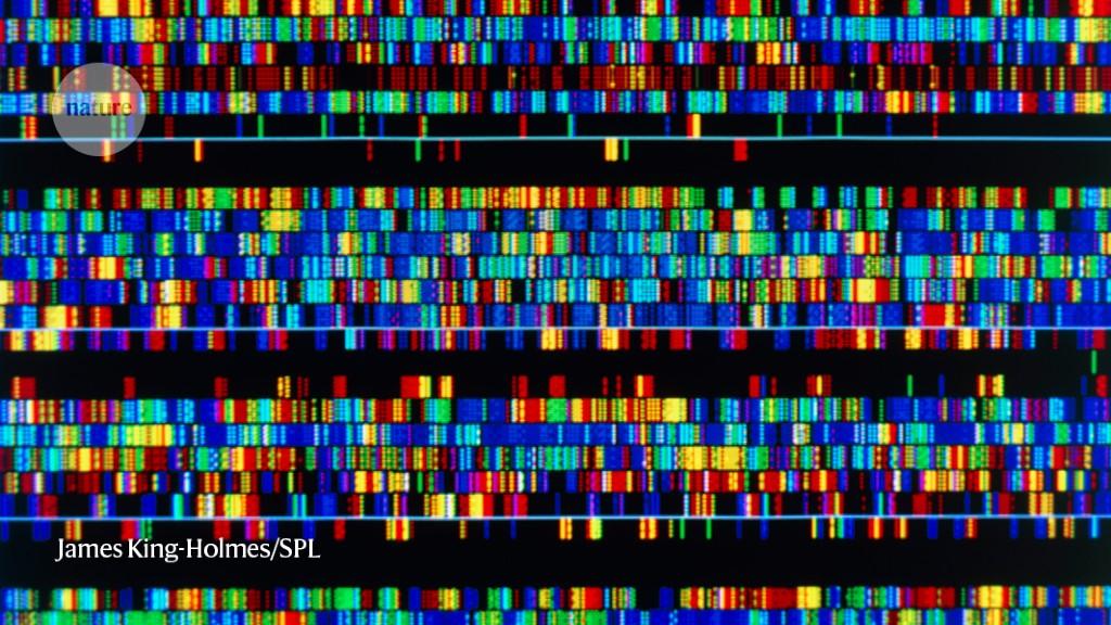 Naukowcy twierdzą, że po raz pierwszy w historii cały ludzki genom został zsekwencjonowany