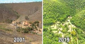 W ciągu 20 lat, para zasadziła 4 miliony drzew, by odtworzyć wylesione obszary lasu