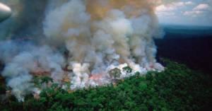 Zdjęcia satelitarne ukazują fatalną sytuację w Amazonii. Już mówimy o międzynarodowym kryzysie